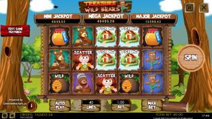 Treasure of the Wild Bears Mobile and PC Preview Pic Main Screen 1
