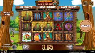 Treasure of the Wild Bears Mobile and PC Preview Pic 7